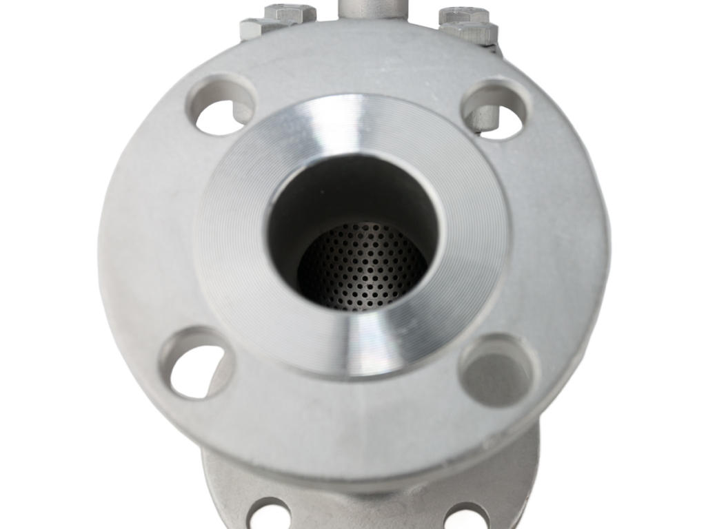 YS-32_SS_Flanged_Strainer_2